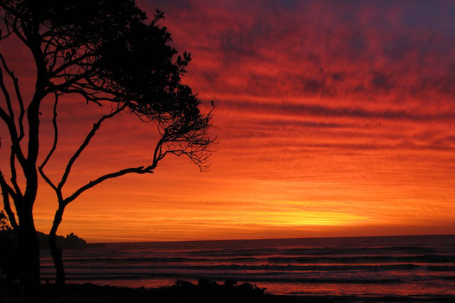 Punakaiki beach front luxury accommodation new Zealand